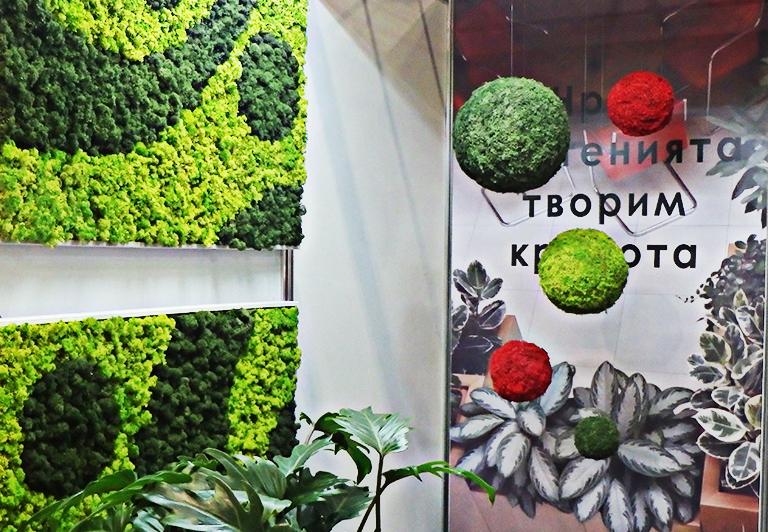 декоративни топки от мъх